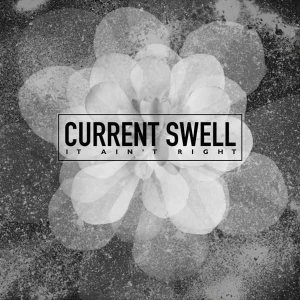 Current Swell Music Widget Retail Links Purchase Order Pre-save Pre-sale Stream
