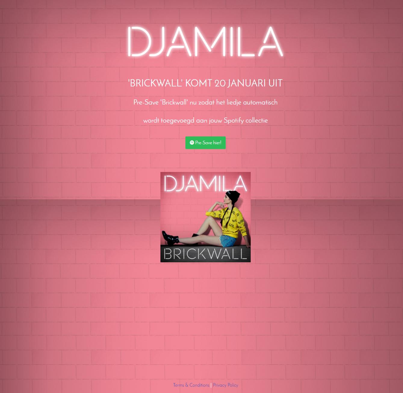 Djamila Pre-Save for Spotify, Djamila Presave For Spotify, Djamila Spotify Pre-Save